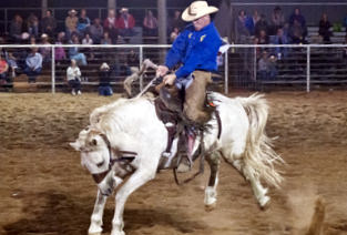 image of man riding bucking horse